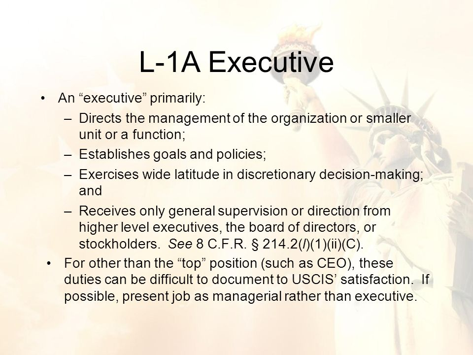 An executive primarily: –Directs the management of the organization or smaller unit or a function; –Establishes goals and policies; –Exercises wide latitude in discretionary decision-making; and –Receives only general supervision or direction from higher level executives, the board of directors, or stockholders.