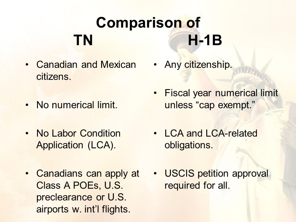 Canadian and Mexican citizens. No numerical limit.