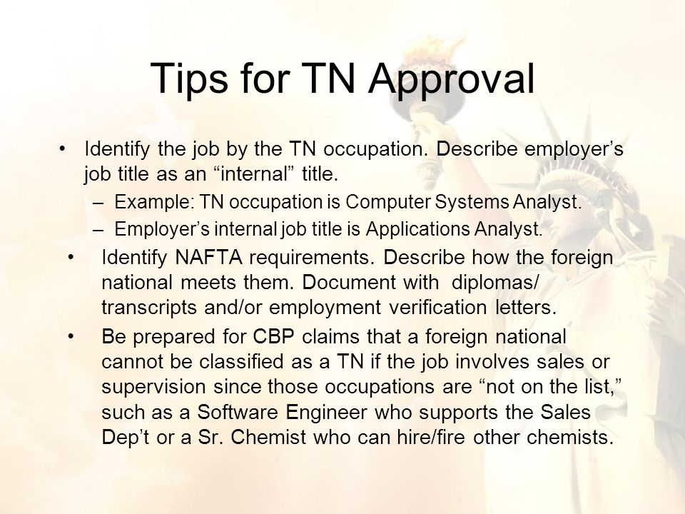 Identify the job by the TN occupation. Describe employer's job title as an internal title.