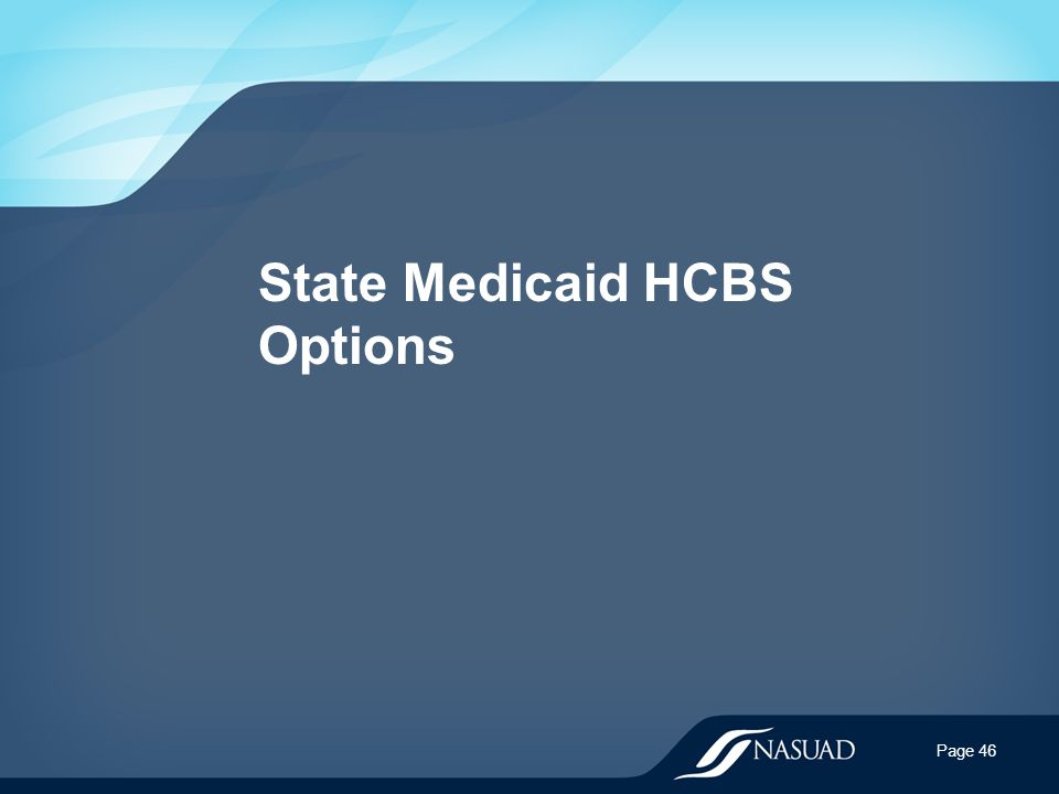 State Medicaid HCBS Options Page 46