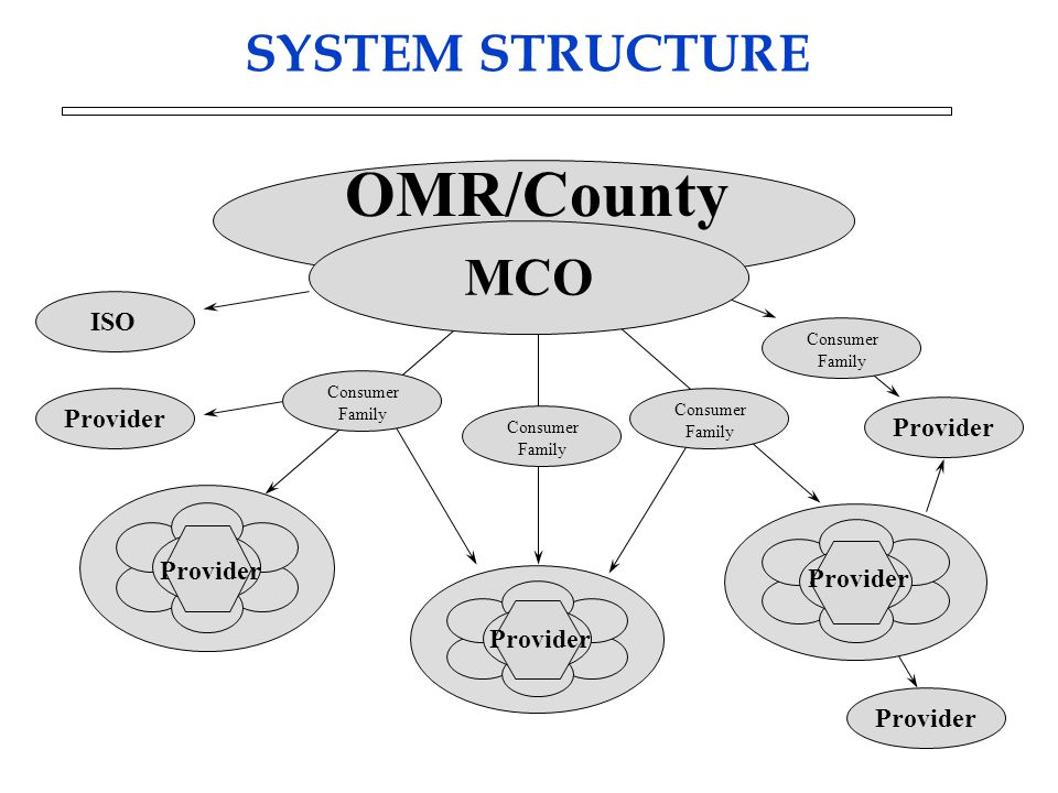 MCO Provider OMR/County Consumer Family Provider SYSTEM STRUCTURE Consumer Family Consumer Family Consumer Family ISO