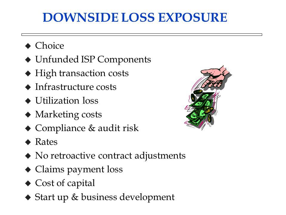 DOWNSIDE LOSS EXPOSURE u Choice u Unfunded ISP Components u High transaction costs u Infrastructure costs u Utilization loss u Marketing costs u Compl