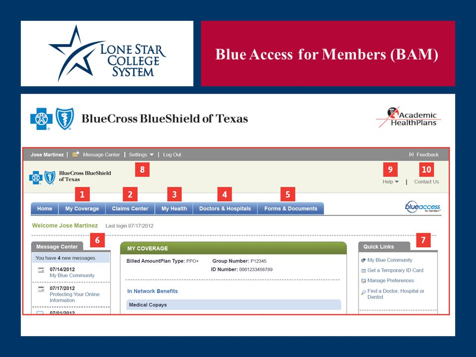 SLIDE 31 Blue Access for Members (BAM)
