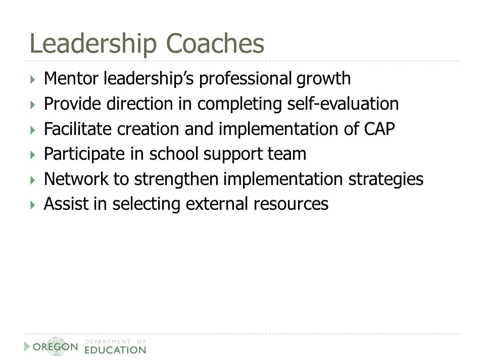 Leadership Coaches  Mentor leadership's professional growth  Provide direction in completing self-evaluation  Facilitate creation and implementation of CAP  Participate in school support team  Network to strengthen implementation strategies  Assist in selecting external resources