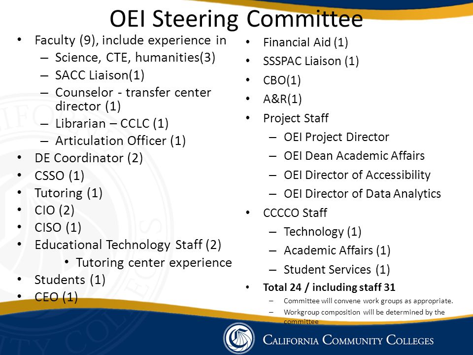 OEI Steering Committee Faculty (9), include experience in – Science, CTE, humanities(3) – SACC Liaison(1) – Counselor - transfer center director (1) – Librarian – CCLC (1) – Articulation Officer (1) DE Coordinator (2) CSSO (1) Tutoring (1) CIO (2) CISO (1) Educational Technology Staff (2) Tutoring center experience Students (1) CEO (1) Financial Aid (1) SSSPAC Liaison (1) CBO(1) A&R(1) Project Staff – OEI Project Director – OEI Dean Academic Affairs – OEI Director of Accessibility – OEI Director of Data Analytics CCCCO Staff – Technology (1) – Academic Affairs (1) – Student Services (1) Total 24 / including staff 31 – Committee will convene work groups as appropriate.