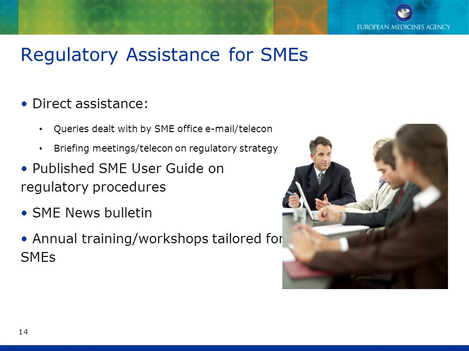 Regulatory Assistance for SMEs Direct assistance: Queries dealt with by SME office e-mail/telecon Briefing meetings/telecon on regulatory strategy Published SME User Guide on regulatory procedures SME News bulletin Annual training/workshops tailored for SMEs 14