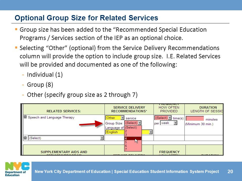 20 Optional Group Size for Related Services  Group size has been added to the Recommended Special Education Programs / Services section of the IEP as an optional choice.