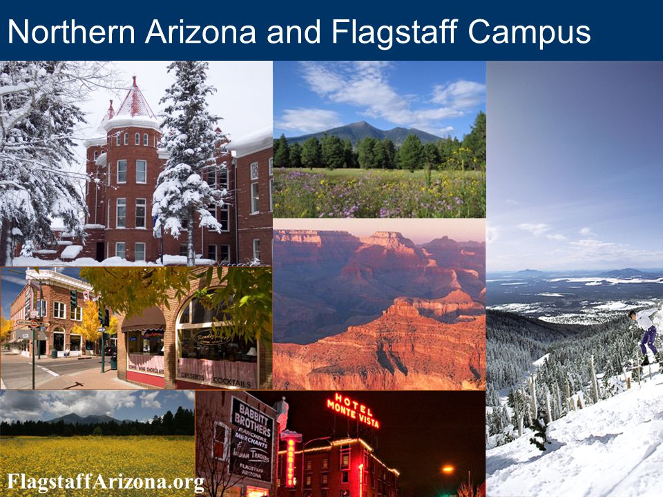 Housing in Flagstaff Join our Graduate Student Housing Listserv for up-to-date housing info from fellow graduate students and home owners –www.nau.edu/gsgwww.nau.edu/gsg Click on Grad Life Click on Housing