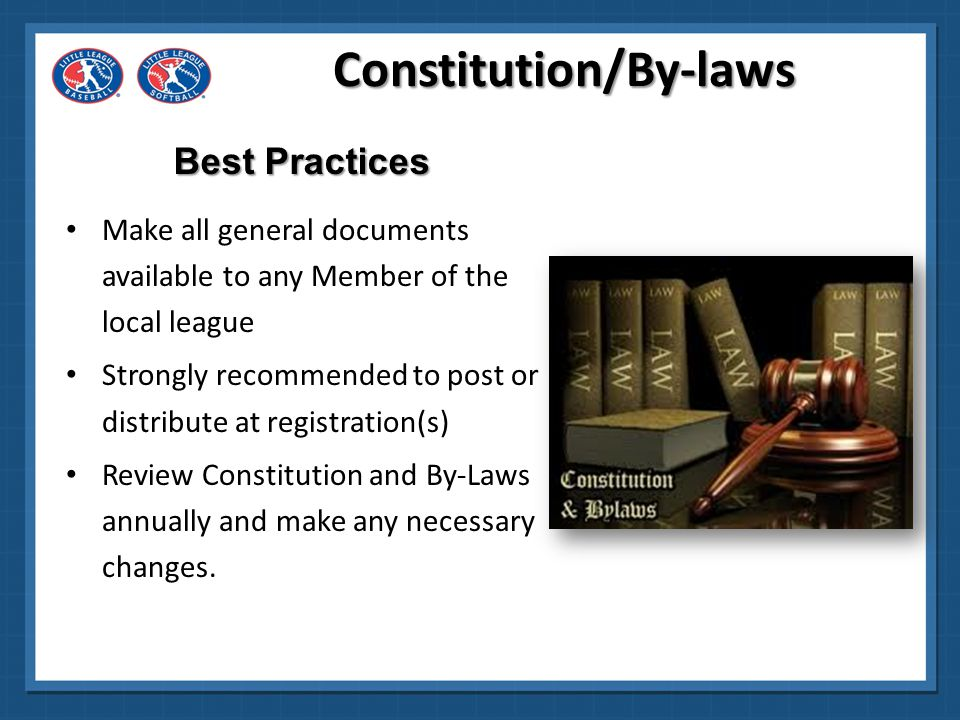 Constitution/By-laws Make all documents transparent .