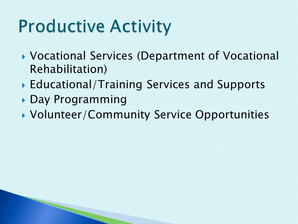  Vocational Services (Department of Vocational Rehabilitation)  Educational/Training Services and Supports  Day Programming  Volunteer/Community Service Opportunities