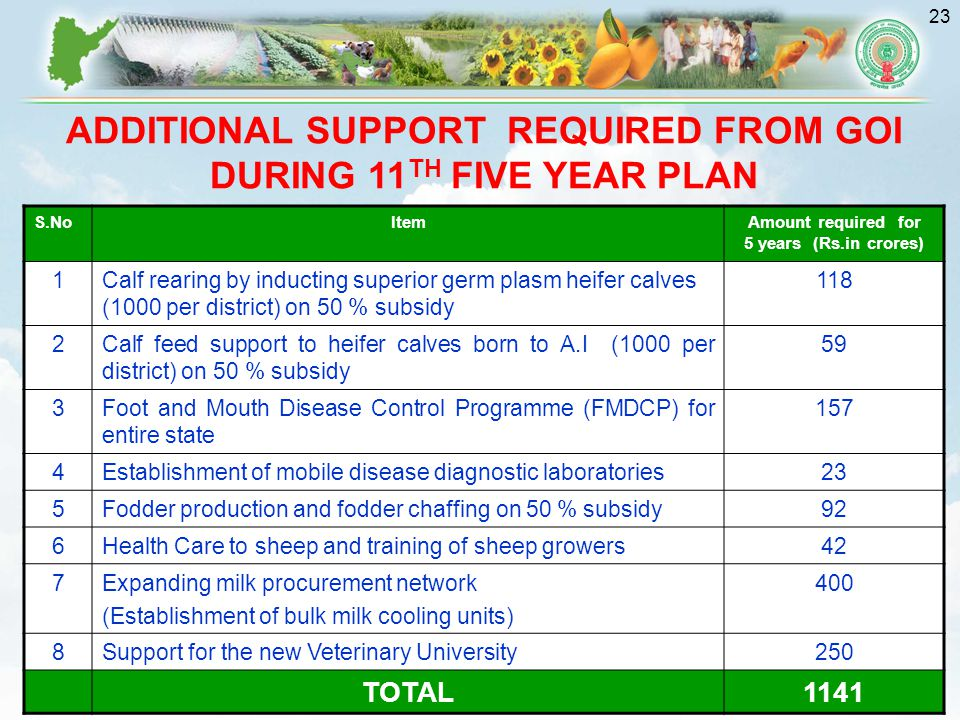 23 ADDITIONAL SUPPORT REQUIRED FROM GOI DURING 11 TH FIVE YEAR PLAN S.NoItemAmount required for 5 years (Rs.in crores) 1Calf rearing by inducting superior germ plasm heifer calves (1000 per district) on 50 % subsidy 118 2Calf feed support to heifer calves born to A.I (1000 per district) on 50 % subsidy 59 3Foot and Mouth Disease Control Programme (FMDCP) for entire state 157 4Establishment of mobile disease diagnostic laboratories23 5Fodder production and fodder chaffing on 50 % subsidy92 6Health Care to sheep and training of sheep growers42 7Expanding milk procurement network (Establishment of bulk milk cooling units) 400 8Support for the new Veterinary University250 TOTAL1141