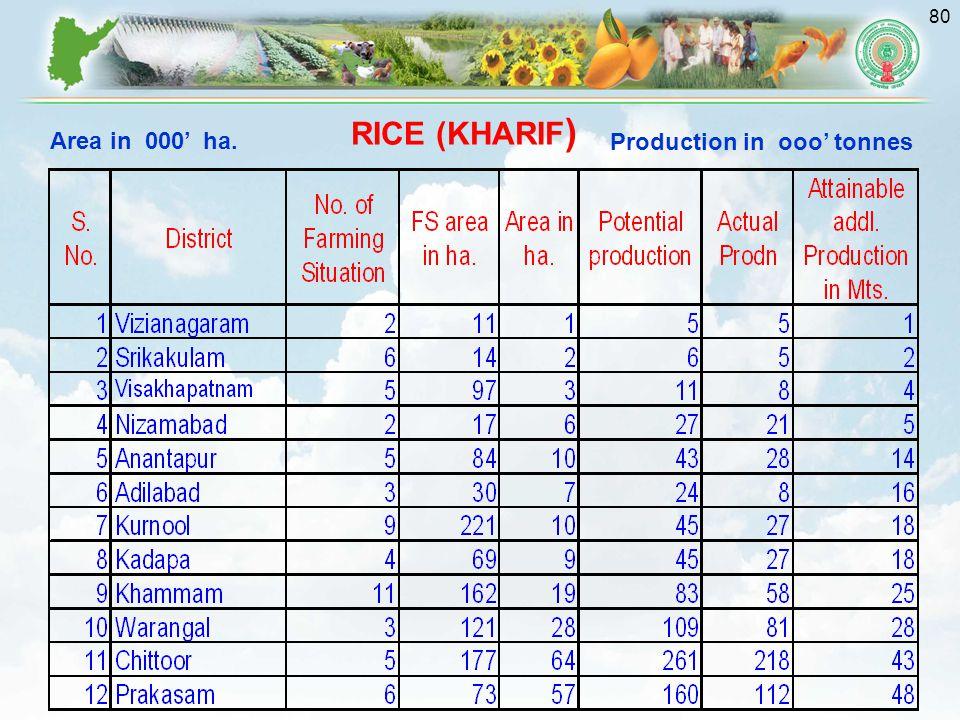 80 Area in 000' ha. Production in ooo' tonnes RICE (KHARIF )