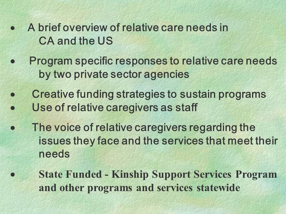  A brief overview of relative care needs in CA and the US  Program specific responses to relative care needs by two private sector agencies  Creative funding strategies to sustain programs  Use of relative caregivers as staff  The voice of relative caregivers regarding the issues they face and the services that meet their needs  State Funded - Kinship Support Services Program and other programs and services statewide