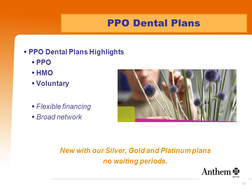 12 PPO Dental Plans  PPO Dental Plans Highlights  PPO  HMO  Voluntary  Flexible financing  Broad network New with our Silver, Gold and Platinum plans no waiting periods.