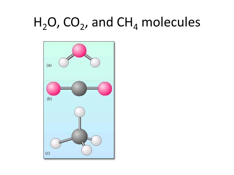 H 2 O, CO 2, and CH 4 molecules