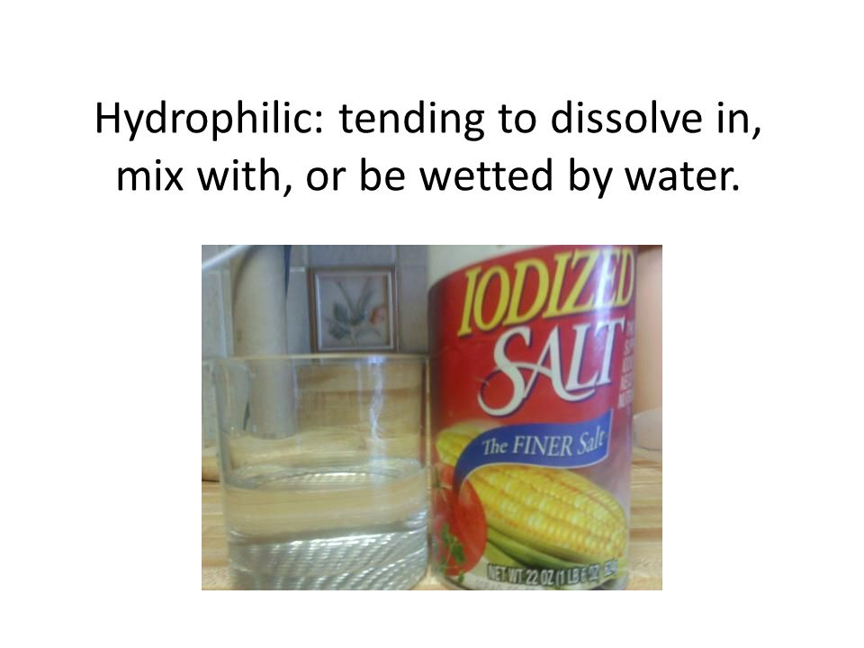 Hydrophilic: tending to dissolve in, mix with, or be wetted by water.