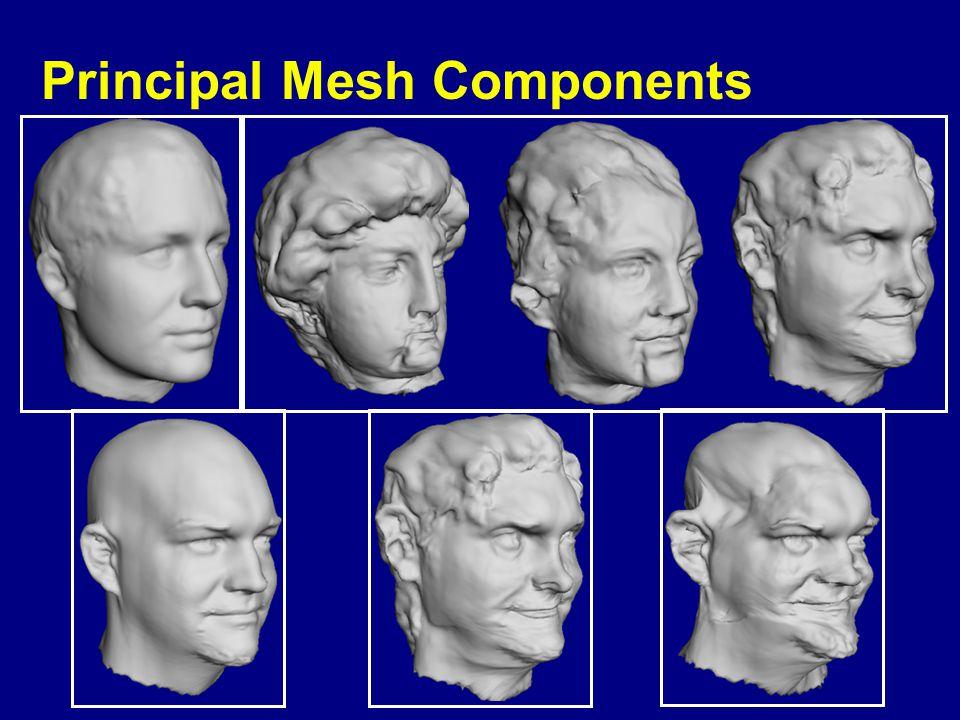 Principal Mesh Components