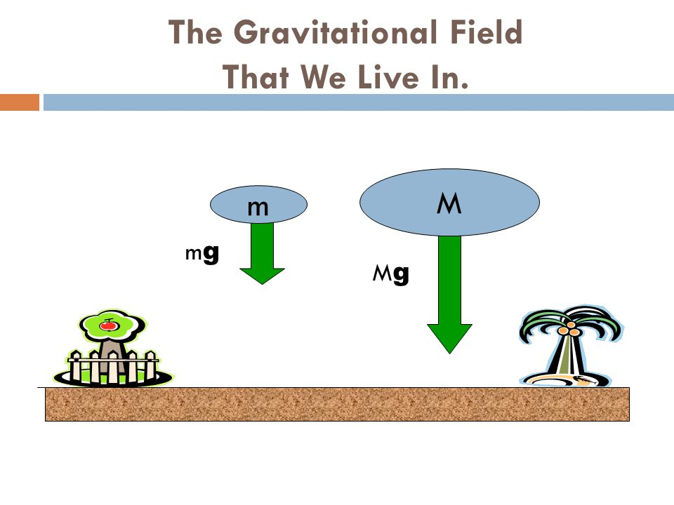 The Gravitational Field That We Live In. m M mgmg MgMg