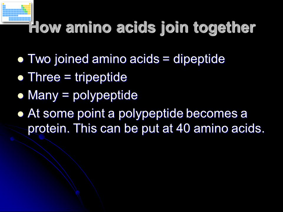 Two joined amino acids = dipeptide Two joined amino acids = dipeptide Three = tripeptide Three = tripeptide Many = polypeptide Many = polypeptide At some point a polypeptide becomes a protein.