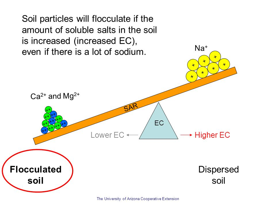 The University of Arizona Cooperative Extension Soil particles will flocculate if the amount of soluble salts in the soil is increased (increased EC),