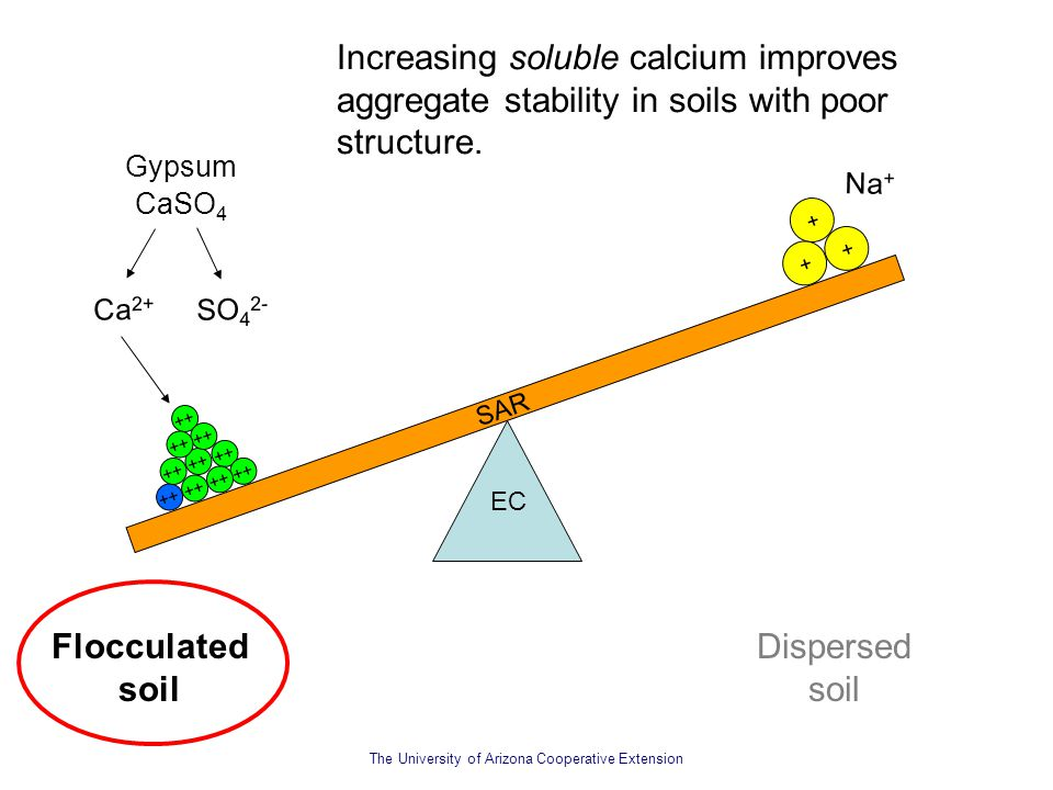 The University of Arizona Cooperative Extension Na + SAR EC Increasing soluble calcium improves aggregate stability in soils with poor structure. Floc