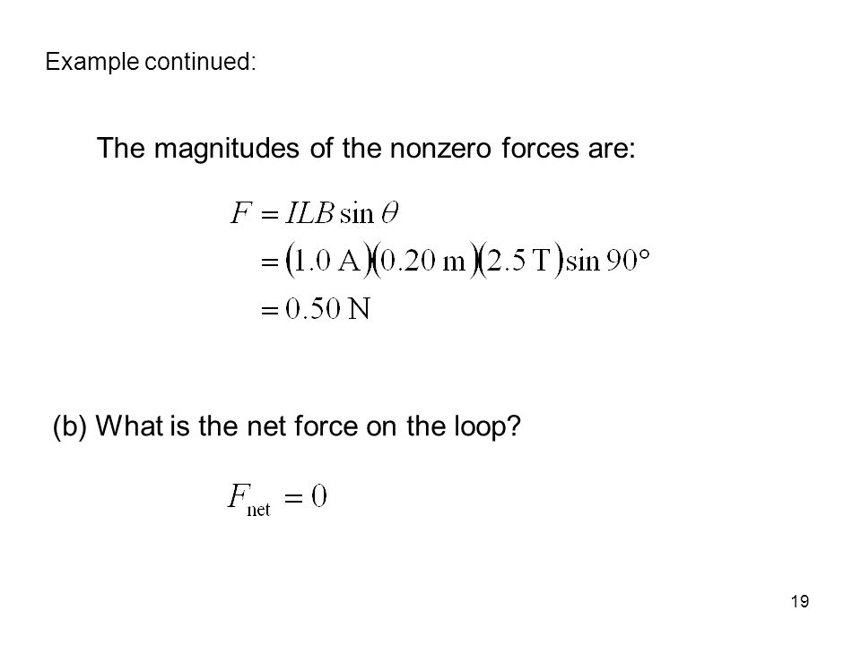 19 The magnitudes of the nonzero forces are: (b) What is the net force on the loop.