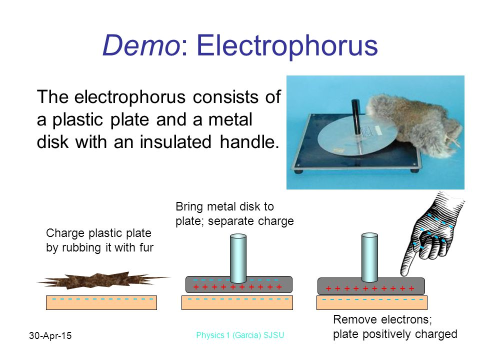 30-Apr-15 Physics 1 (Garcia) SJSU Demo: Electrophorus The electrophorus consists of a plastic plate and a metal disk with an insulated handle.