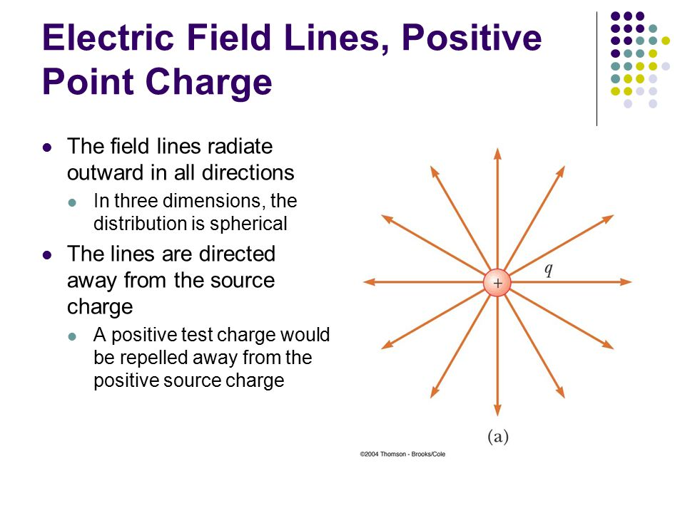 Electric Field Lines, Positive Point Charge The field lines radiate outward in all directions In three dimensions, the distribution is spherical The l