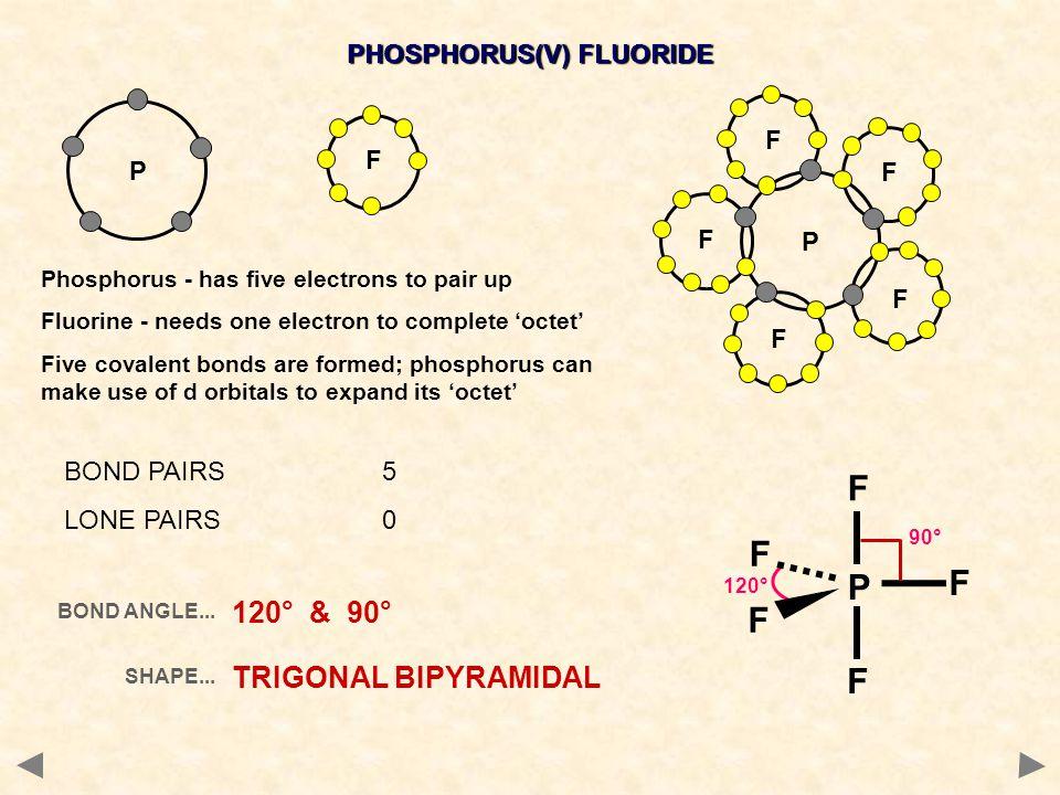 PHOSPHORUS(V) FLUORIDE F P P F F F F F BOND PAIRS5 LONE PAIRS0 BOND ANGLE... SHAPE... 120° & 90° TRIGONAL BIPYRAMIDAL 120° F F P F F F 90° Phosphorus