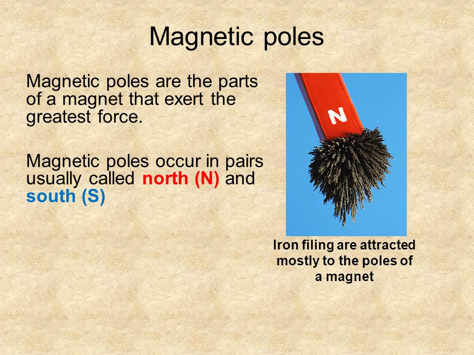 Magnetic poles Magnetic poles are the parts of a magnet that exert the greatest force.