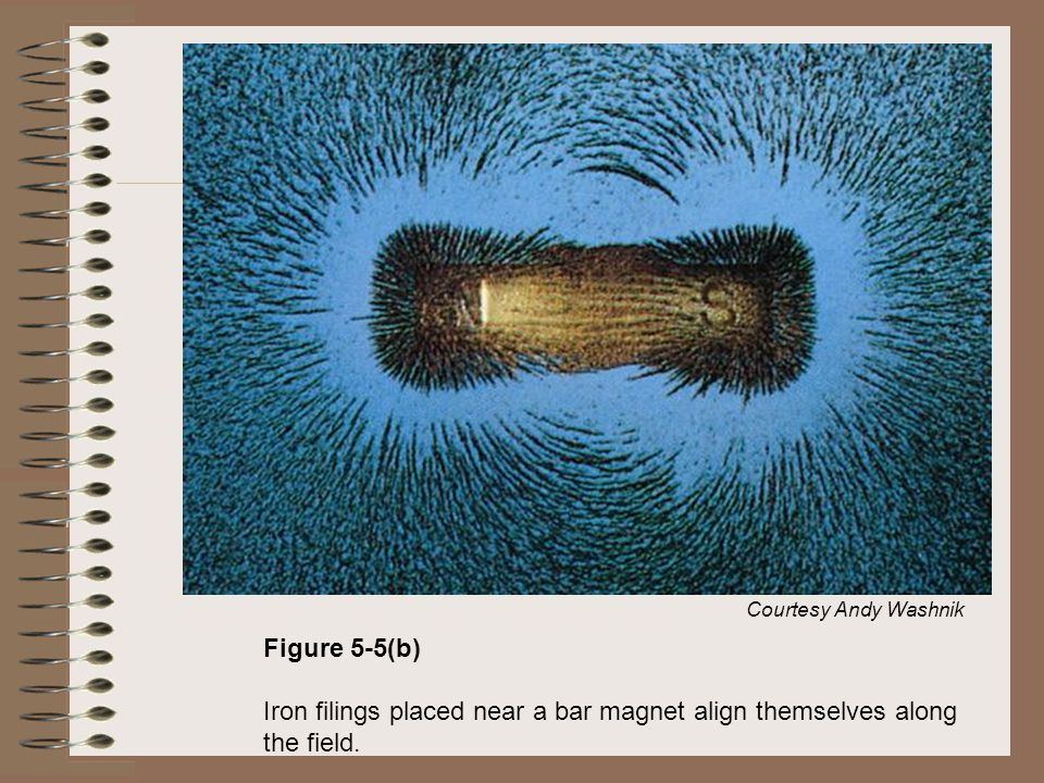 Courtesy Andy Washnik Figure 5-5(b) Iron filings placed near a bar magnet align themselves along the field.