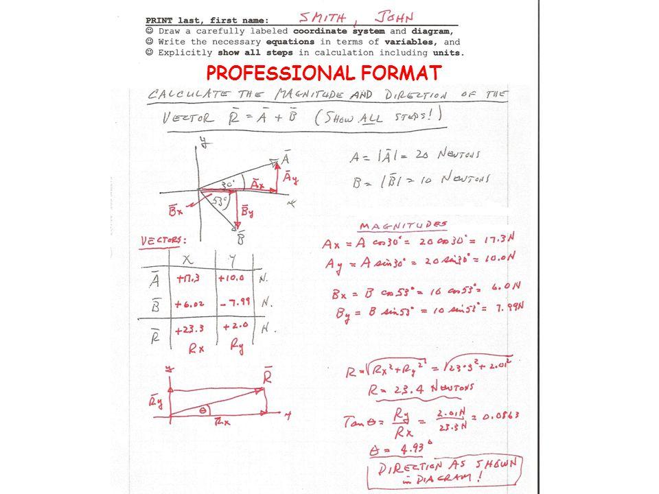 PROFESSIONAL FORMAT