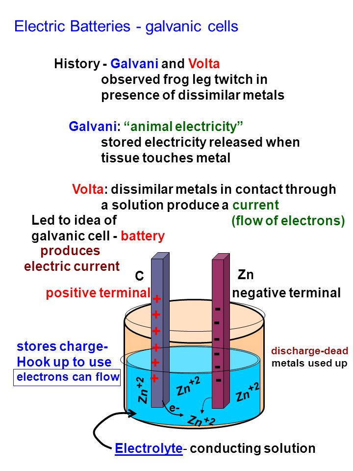 "Electric Batteries - galvanic cells History - Galvani and Volta observed frog leg twitch in presence of dissimilar metals Galvani: ""animal electricity"