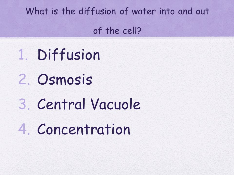 Through what process can materials move into and out of a cell without using energy? 1. Photosynthersis 2. Active transport 3. Cellular Respiration 4.