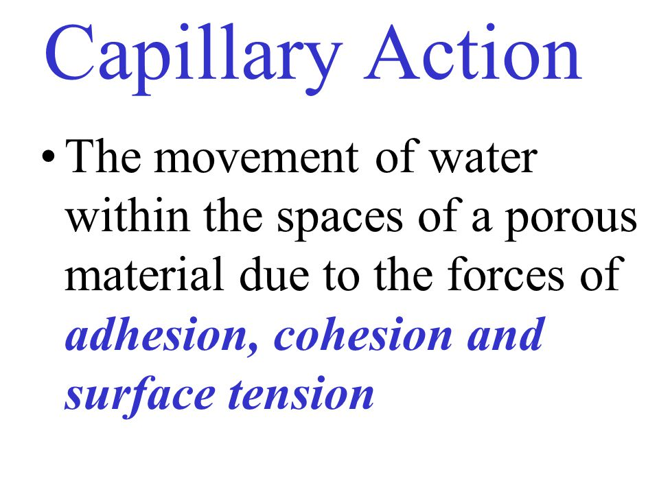 Capillary Action The movement of water within the spaces of a porous material due to the forces of adhesion, cohesion and surface tension