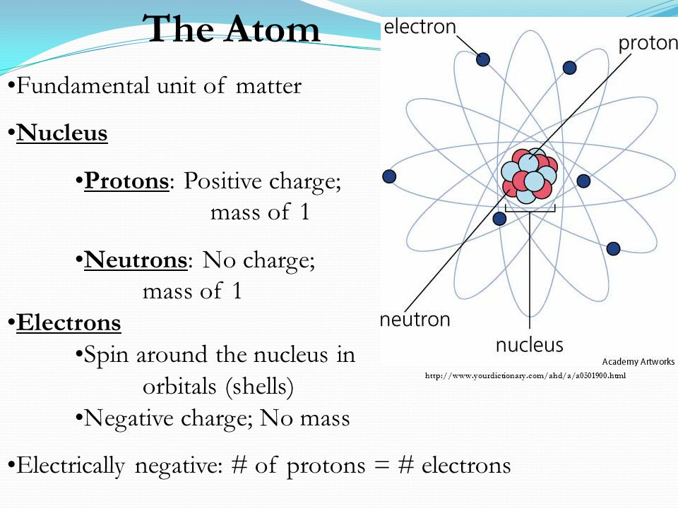 The Atom Fundamental unit of matter Nucleus Protons: Positive charge; mass of 1 Neutrons: No charge; mass of 1 Electrons Spin around the nucleus in or