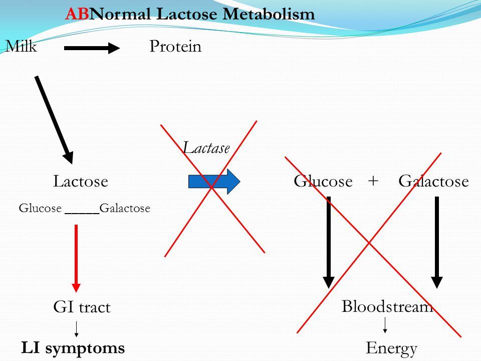 MilkProtein Lactase LactoseGlucose + Galactose Glucose _____Galactose Bloodstream GI tract EnergyLI symptoms Normal Lactose MetabolismAB