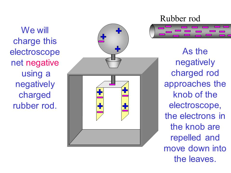As the negatively charged rod approaches the knob of the electroscope, the electrons in the knob are repelled and move down into the leaves.