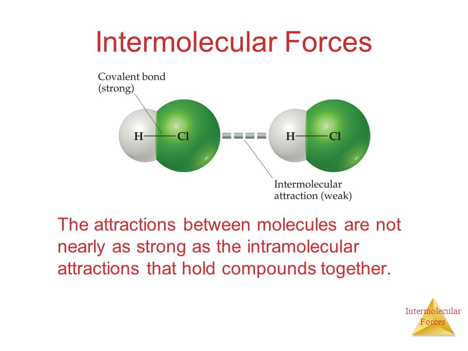 Intermolecular Forces Intermolecular Forces The attractions between molecules are not nearly as strong as the intramolecular attractions that hold com