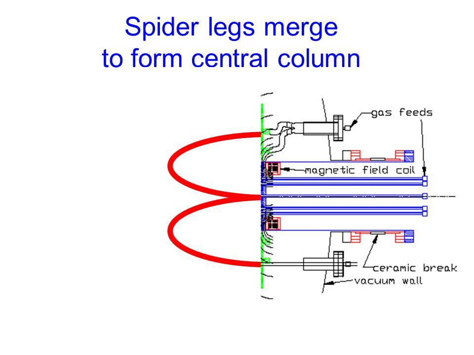 Spider legs merge to form central column