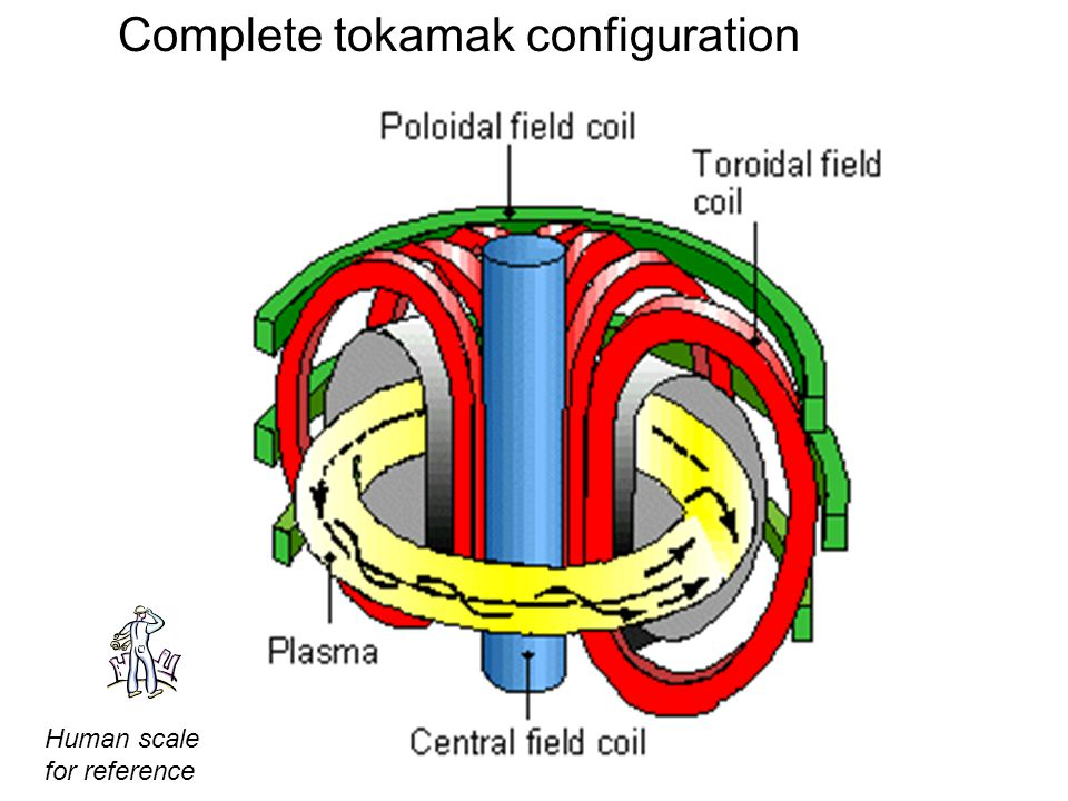 Complete tokamak configuration Human scale for reference