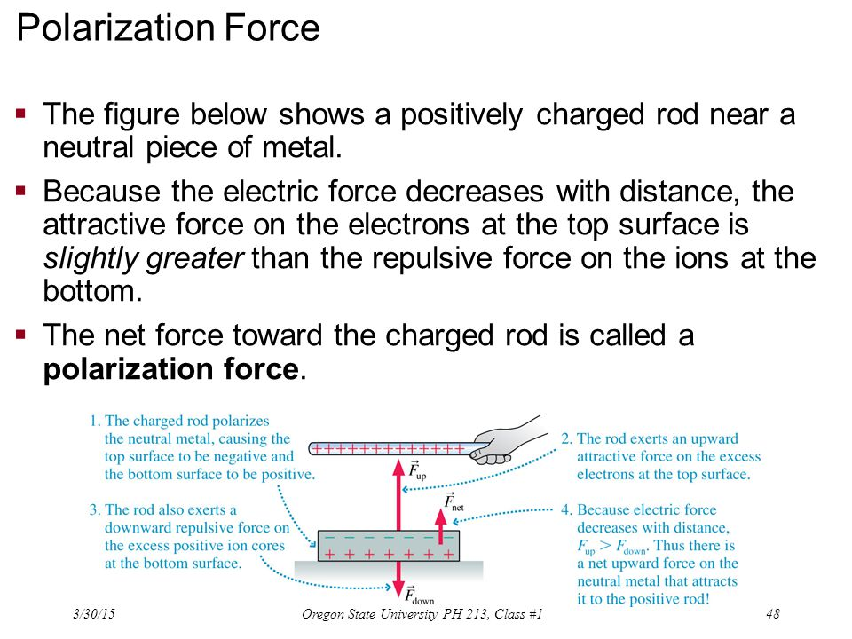 Polarization Force  The figure below shows a positively charged rod near a neutral piece of metal.  Because the electric force decreases with distan