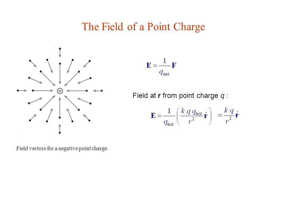 The Field of a Point Charge Field vectors for a negative point charge.