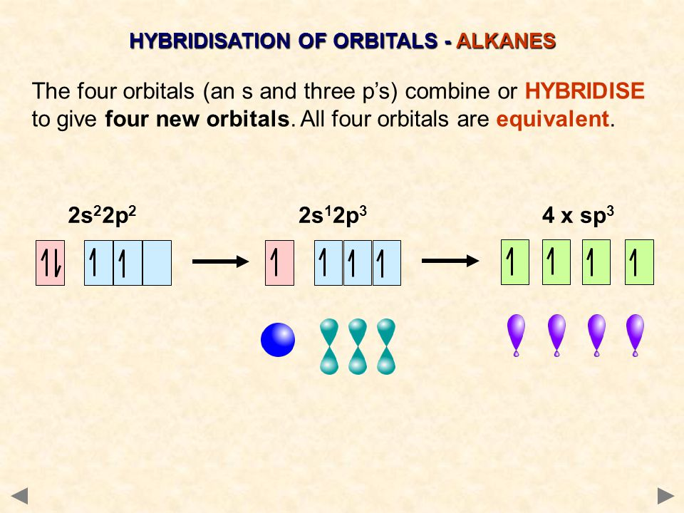 In ALKANES, the four sp 3 orbitals of carbon repel each other into a TETRAHEDRAL arrangement with bond angles of 109.5º.