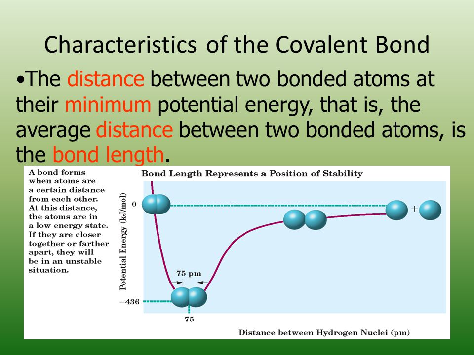 Characteristics of the Covalent Bond The distance between two bonded atoms at their minimum potential energy, that is, the average distance between two bonded atoms, is the bond length.