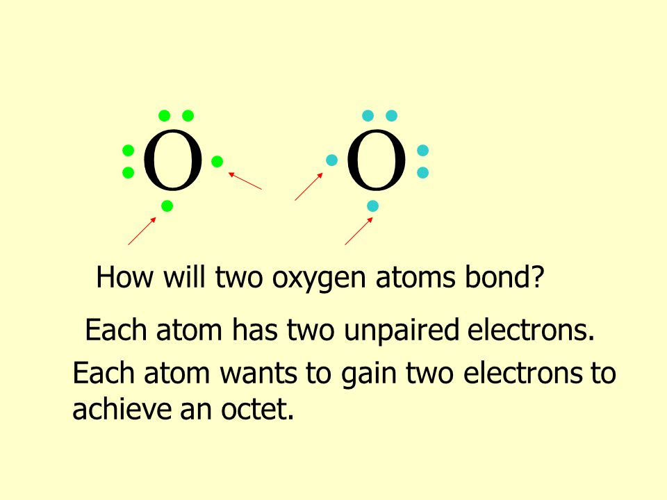 How will two oxygen atoms bond? OO Each atom has two unpaired electrons. Each atom wants to gain two electrons to achieve an octet.