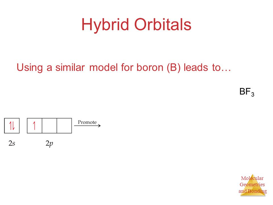 Molecular Geometries and Bonding Hybrid Orbitals Using a similar model for boron (B) leads to… BF 3