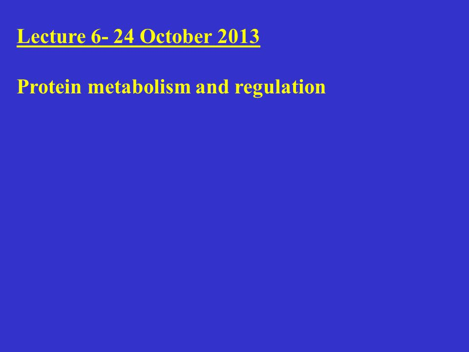 Lecture 6- 24 October 2013 Protein metabolism and regulation