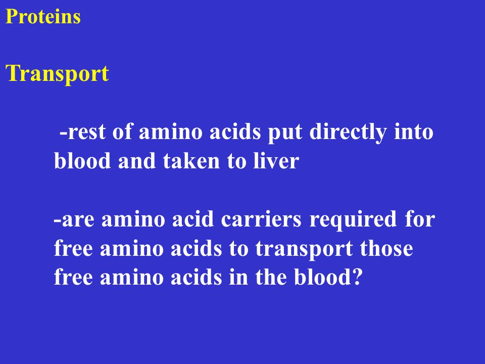 Proteins Transport -rest of amino acids put directly into blood and taken to liver -are amino acid carriers required for free amino acids to transport those free amino acids in the blood