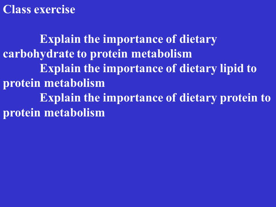 Class exercise Explain the importance of dietary carbohydrate to protein metabolism Explain the importance of dietary lipid to protein metabolism Explain the importance of dietary protein to protein metabolism